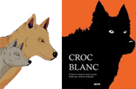 Croc-Blanc-UNE