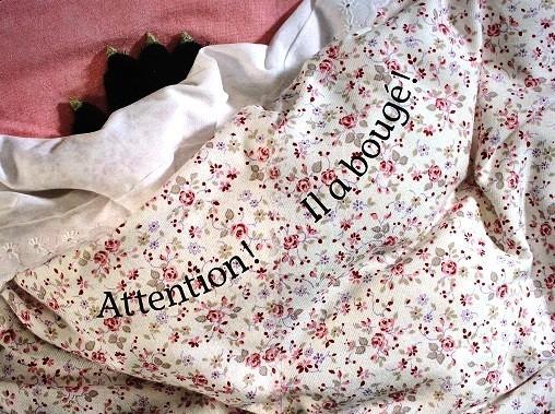 Qui-dort-ici-3