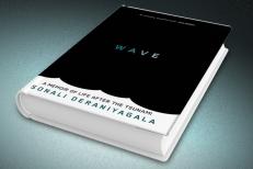 wave_wtr1