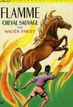 l-etalon-noir,-tome-4---flamme,-cheval-sauvage-1731062