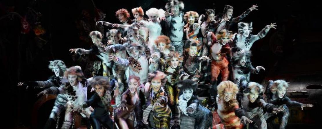 cats-piece-musical-francesoir_field_image_de_base_field_mise_en_avant_principale