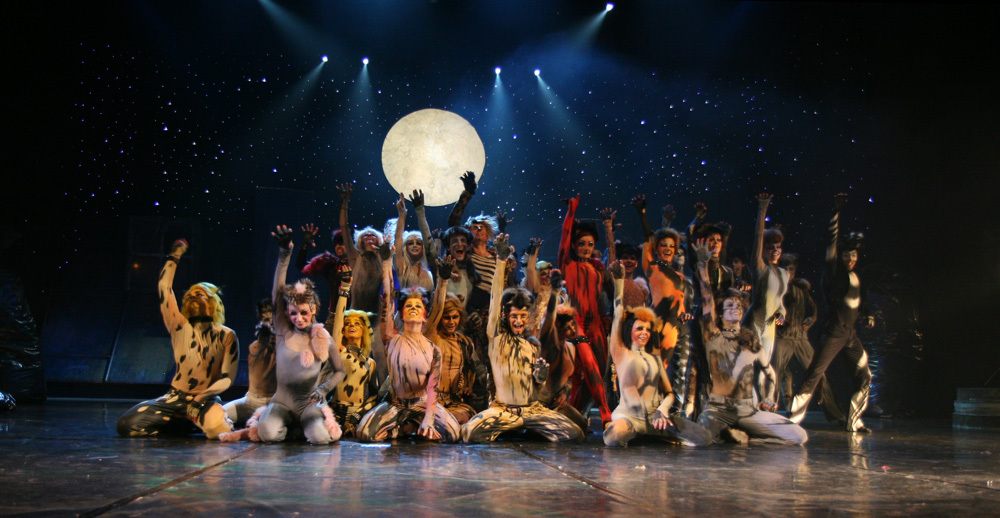 ob_bb20c3_cats-musical